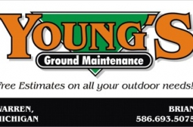 business-cards-youngs